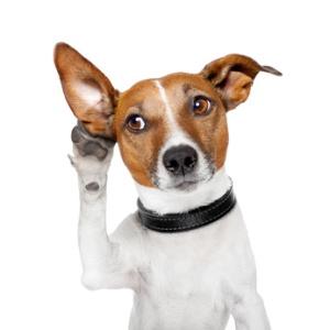 bancos: no hay mas sordo que el que no quiere oir